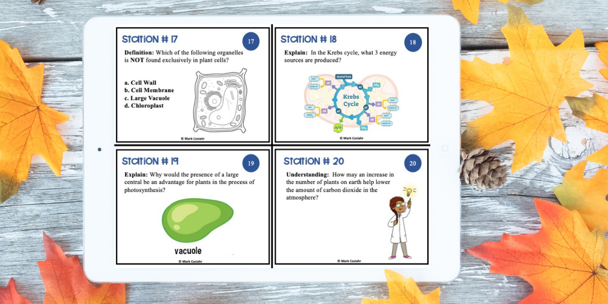 photosynthesis-task-cards